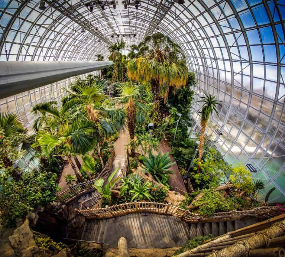 Myriad Botanical Gardens Crystal Bridge Tropical Conservatory